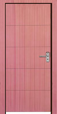 Premium Door (EW-608)